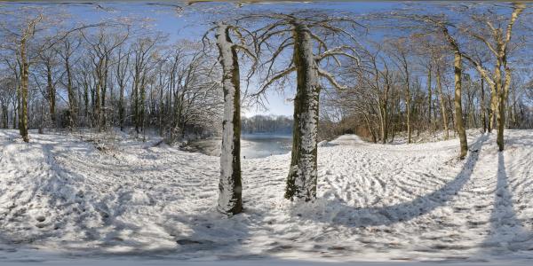 Louveciennes sous la neige II