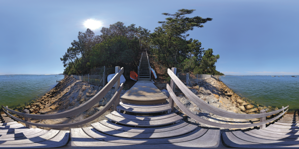 La Vigne - escalier II