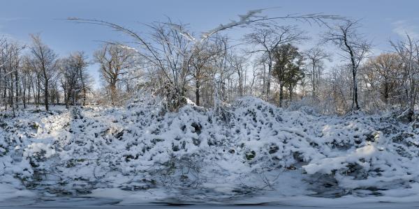 Louveciennes sous la neige I
