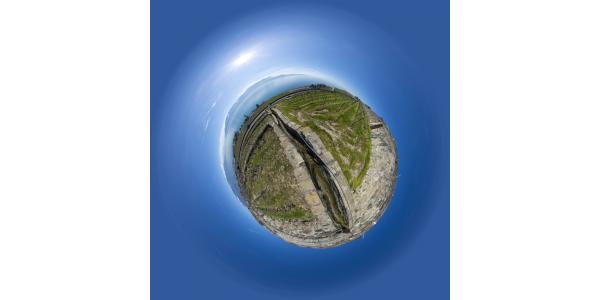 Lac Léman — Saint-Saphorin  —Vignes